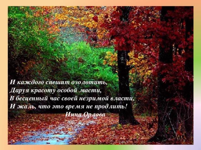 И каждого спешит озолотить,  Даруя красоту особой масти,  В бесценный час своей незримой власти,  И жаль, что это время не продлить!  Инна Орлова
