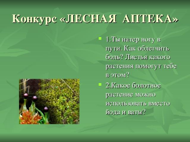 1.Ты натер ногу в пути. Как облегчить боль? Листья какого растения помогут тебе в этом? 2.Какое болотное растение можно использовать вместо йода и ваты?