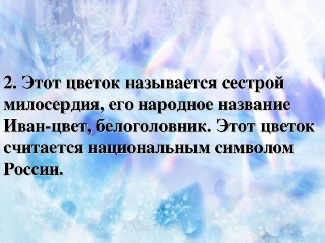 2. Этот цветок называется сестрой милосердия, его народное название Иван-цвет, белоголовник. Этот цветок считается национальным символом России.