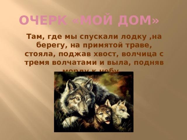 Очерк «Мой дом» Там, где мы спускали лодку ,на берегу, на примятой траве, стояла, поджав хвост, волчица с тремя волчатами и выла, подняв морду к небу…