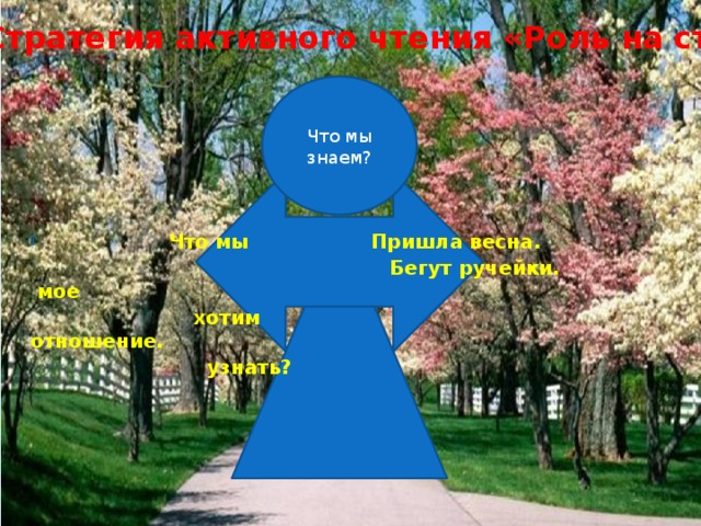 Стратегия активного чтения «Роль на стене » Что мы знаем?  Что мы Пришла весна.  Бегут ручейки. мое  хотим отношение.  узнать?