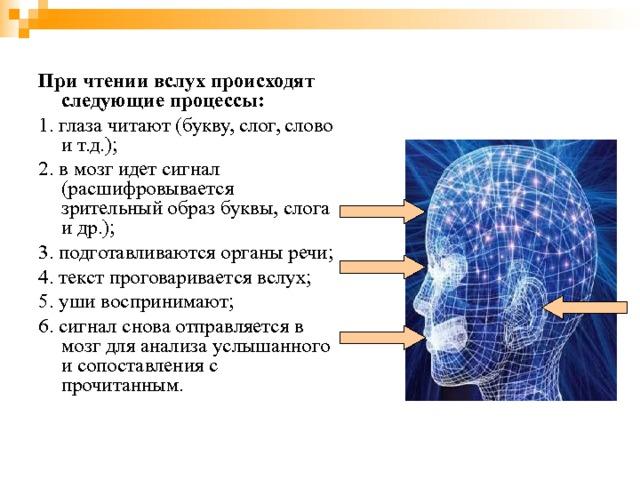 При чтении вслух происходят следующие процессы:  1. глаза читают (букву, слог, слово и т.д.); 2. в мозг идет сигнал (расшифровывается зрительный образ буквы, слога и др.); 3. подготавливаются органы речи; 4. текст проговаривается вслух; 5. уши воспринимают; 6. сигнал снова отправляется в мозг для анализа услышанного и сопоставления с прочитанным.
