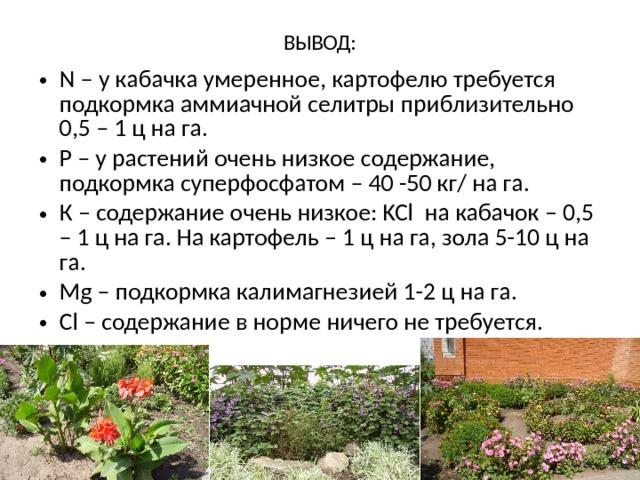 ВЫВОД:   N – у кабачка умеренное, картофелю требуется подкормка аммиачной селитры приблизительно 0,5 – 1 ц на га. P – у растений очень низкое содержание, подкормка суперфосфатом – 40 -50 кг/ на га. К – содержание очень низкое: KCl на кабачок – 0,5 – 1 ц на га. На картофель – 1 ц на га, зола 5-10 ц на га. Mg – подкормка калимагнезией 1-2 ц на га. Cl – содержание в норме ничего не требуется.