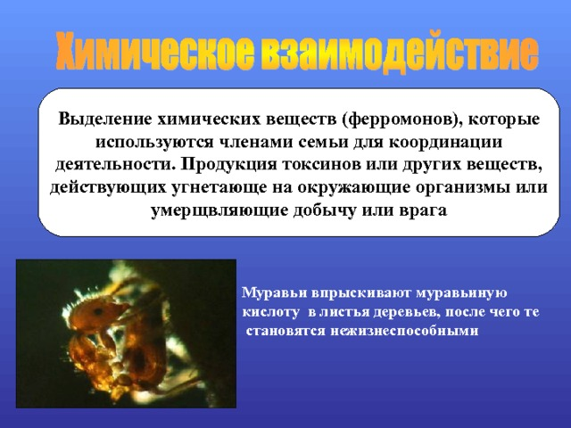 Выделение химических веществ (ферромонов), которые используются членами семьи для координации деятельности. Продукция токсинов или других веществ, действующих угнетающе на окружающие организмы или умерщвляющие добычу или врага  Муравьи впрыскивают муравьиную кислоту в листья деревьев, после чего те  становятся нежизнеспособными