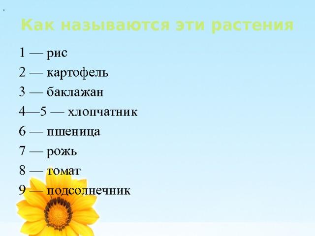 . Как называются эти растения 1 — рис 2 — картофель 3 — баклажан 4—5 — хлопчатник 6 — пшеница 7 — рожь 8 — томат 9 — подсолнечник