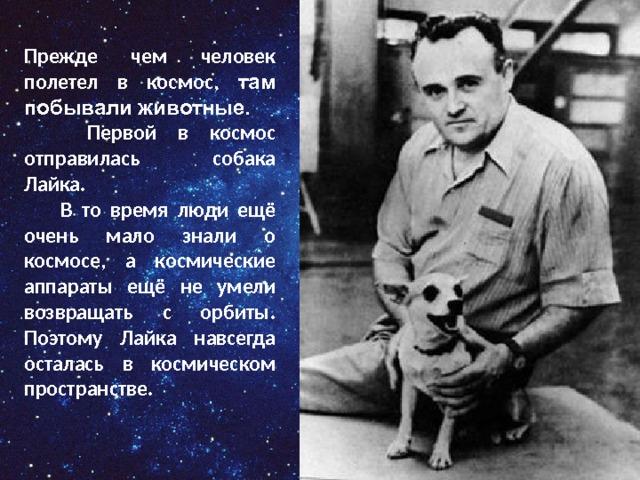 Прежде чем человек полетел в космос, там побывали животные.  Первой в космос отправилась собака Лайка.  В то время люди ещё очень мало знали о космосе, а космические аппараты ещё не умели возвращать с орбиты. Поэтому Лайка навсегда осталась в космическом пространстве.