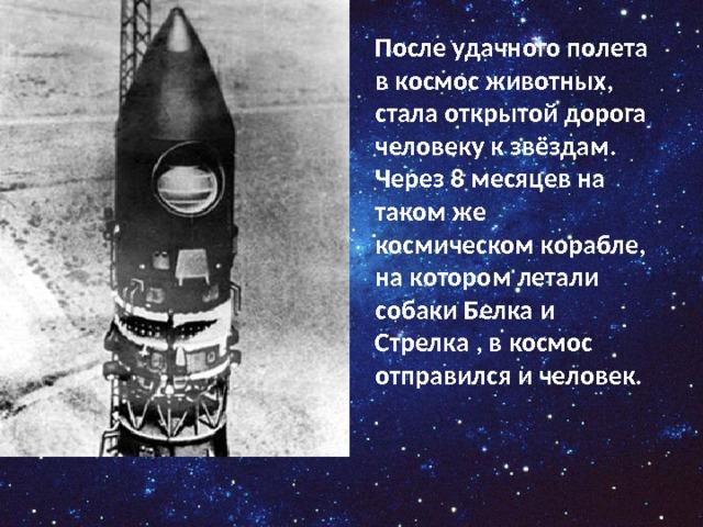 После удачного полета в космос животных, стала открытой дорога человеку к звёздам. Через 8 месяцев на таком же космическом корабле, на котором летали собаки Белка и Стрелка , в космос отправился и человек.