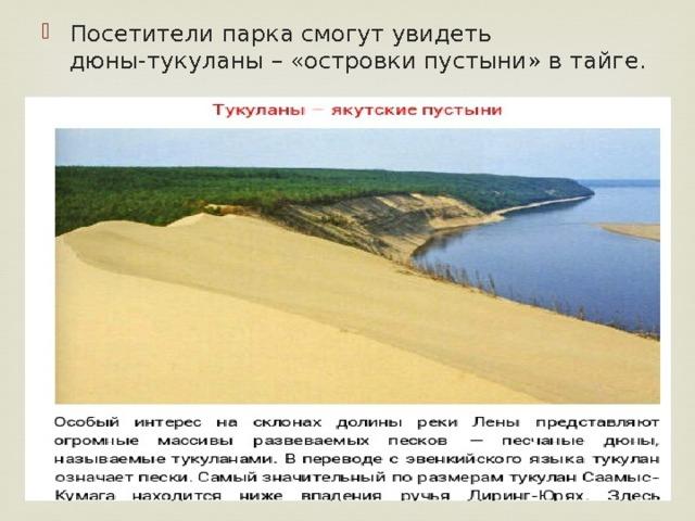 Посетители парка смогут увидеть дюны-тукуланы – «островки пустыни» в тайге.
