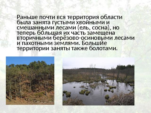 Раньше почти вся территория области была занята густыми хвойными и смешанными лесами (ель, сосна), но теперь бо́льшая их часть замещена вторичными берёзово-осиновыми лесами и пахотными землями. Больши́е территории заняты также болотами.