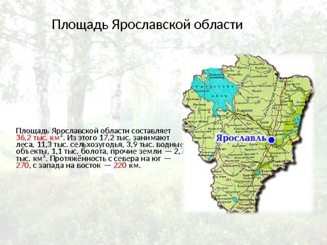 Площадь Ярославской области Площадь Ярославской области составляет 36,2 тыс. км ². Из этого 17,2 тыс. занимают леса, 11,3 тыс. сельхозугодья, 3,9 тыс. водные объекты, 1,1 тыс. болота, прочие земли— 2,7 тыс. км². Протяжённость с севера на юг— 270 , с запада на восток— 220 км.