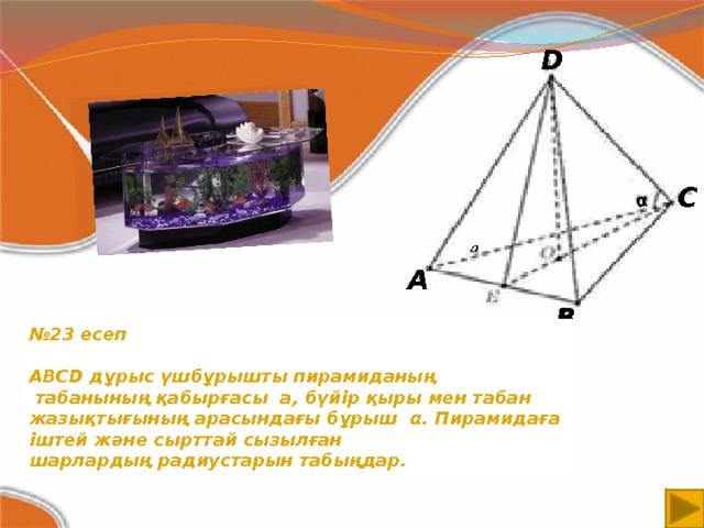 α D С A B № 23 есеп  ABCD дұрыс үшбұрышты пирамиданың  табанының қабырғасы a, бүйір қыры мен табан жазықтығының арасындағы бұрыш α. Пирамидаға іштей және сырттай сызылған шарлардың радиустарын табыңдар.