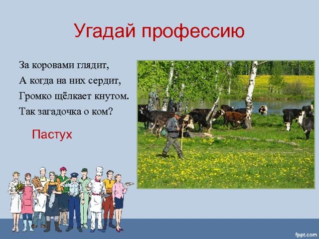 Угадай профессию За коровами глядит, А когда на них сердит, Громко щёлкает кнутом. Так загадочка о ком? Пастух