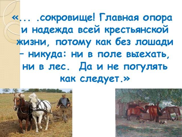 «... .сокровище! Главная опора и надежда всей крестьянской жизни, потому как без лошади – никуда: ни в поле выехать, ни в лес. Да и не погулять как следует.»