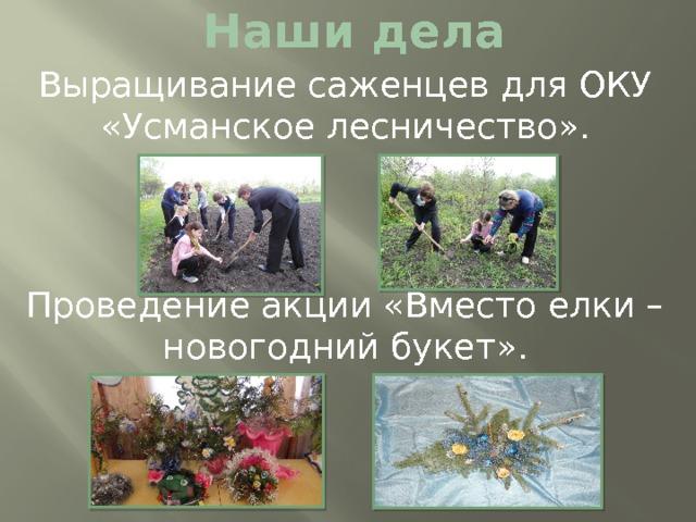 Наши дела Выращивание саженцев для ОКУ «Усманское лесничество». Проведение акции «Вместо елки – новогодний букет».