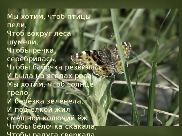 Мы хотим, чтоб птицы пели, Чтоб вокруг леса шумели, Чтобы речка серебрилась, Чтобы бабочка резвилась И была на ягодах роса! Мы хотим, чтоб солнце грело И берёзка зеленела, И под ёлкой жил смешной колючий ёж. Чтобы белочка скакала, Чтобы радуга сверкала, Чтобы летом лил весёлый дождь!