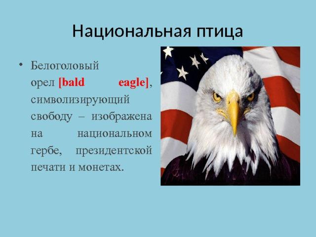 Национальная птица Белоголовый орел [bald eagle] , символизирующий свободу – изображена на национальном гербе, президентской печати и монетах.