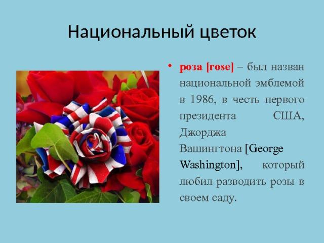 Национальный цветок роза[rose] – был назван национальной эмблемой в 1986, в честь первого президента США, Джорджа Вашингтона [George Washington], который любил разводить розы в своем саду.