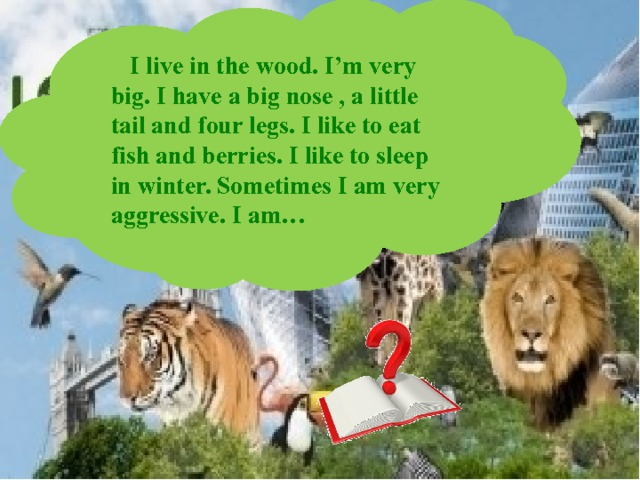I live in the wood. I'm very big. I have a big nose , a little tail and four legs. I like to eat fish and berries. I like to sleep in winter. Sometimes I am very aggressive. I am…
