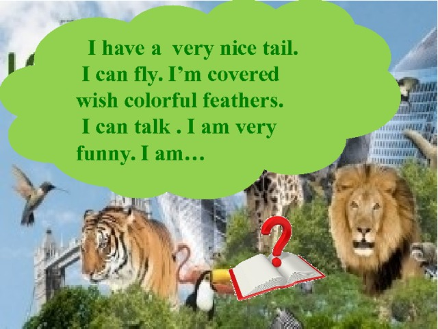 I have a very nice tail.  I can fly. I'm covered wish colorful feathers.  I can talk . I am very funny. I am…