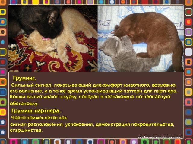 Груминг .  Сильный сигнал, показывающий дискомфорт животного, возможно, его волнение, и в то же время успокаивающий паттерн для партнера. Кошки вылизывают шкурку, попадая в незнакомую, но неопасную обстановку.  Груминг партнера .  Часто применяется как сигнал расположения, успокоения, демонстрация покровительства, старшинства.