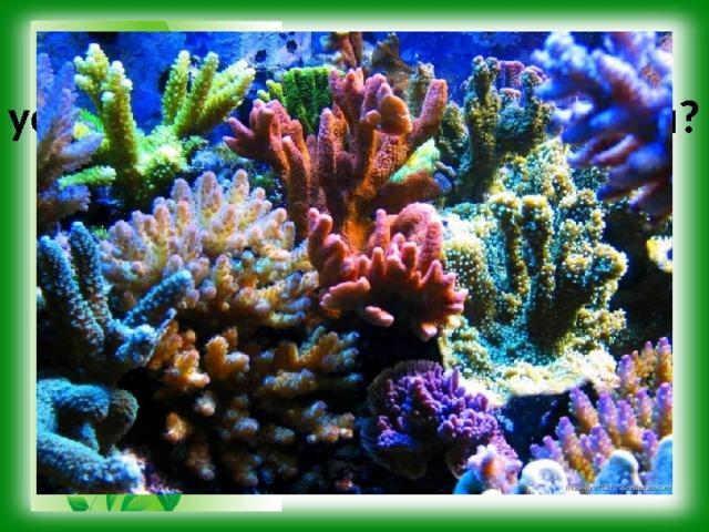 Какие биологические науки установили приведённые факты? Для роста и развития кораллам требуются благоприятные условия. Они обитают в воде с достаточно высокой солёностью и температурой. В пресной и относительно прохладной воде кораллы не живут.