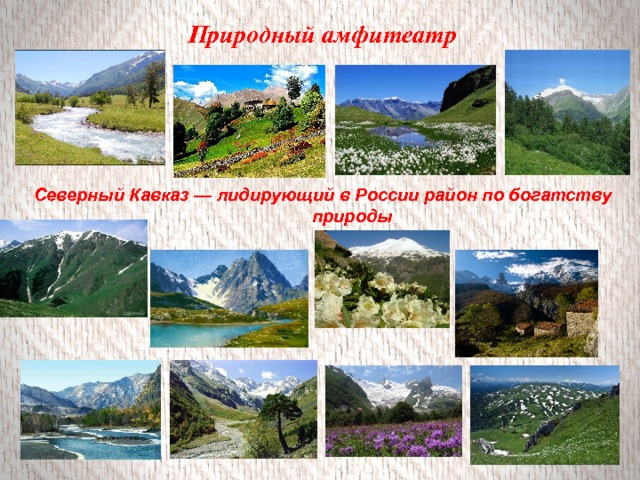 Природный амфитеатр Северный Кавказ — лидирующий в России район по богатству природы