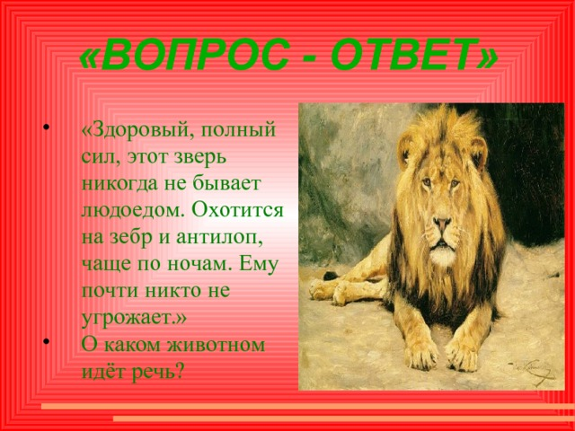 «ВОПРОС - ОТВЕТ» «Здоровый, полный сил, этот зверь никогда не бывает людоедом. Охотится на зебр и антилоп, чаще по ночам. Ему почти никто не угрожает.» О каком животном идёт речь?