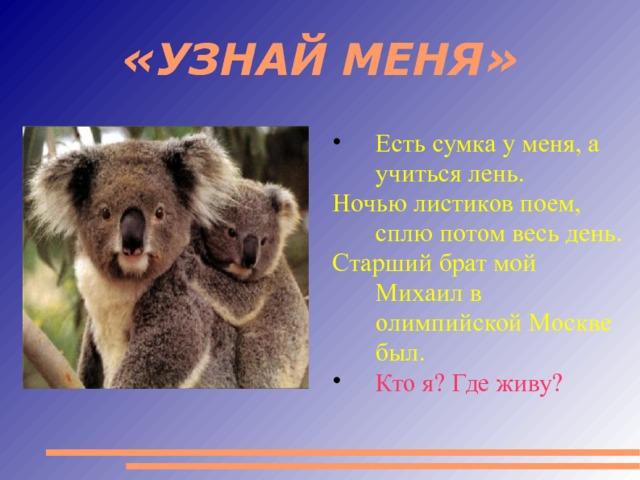 «УЗНАЙ МЕНЯ» Есть сумка у меня, а учиться лень. Ночью листиков поем, сплю потом весь день. Старший брат мой Михаил в олимпийской Москве был. Кто я? Где живу?