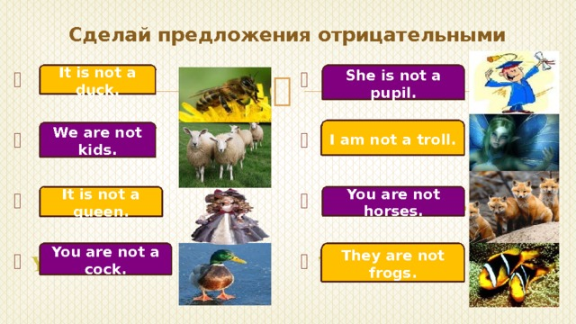 Сделай предложения отрицательными It is not a duck. She is not a pupil.  He is a pupil.  It is a duck.  I am a troll.  We are kids.  You are horses .   It is a queen. They are frogs. You are a cock. I am not a troll. We are not kids. It is not a queen. You are not horses. They are not frogs. You are not a cock.