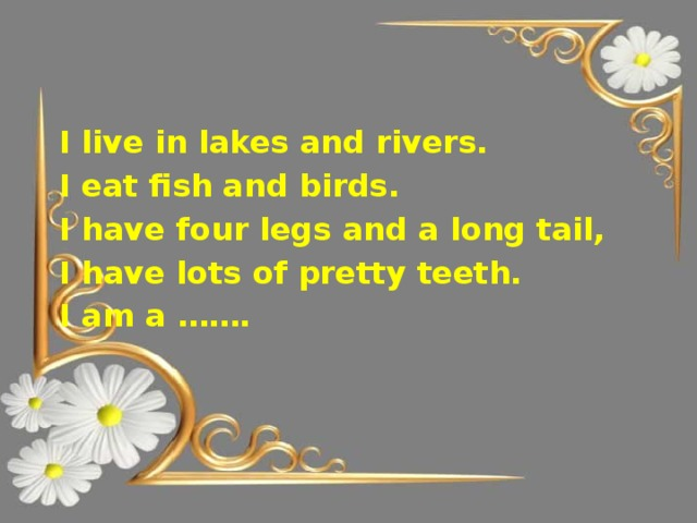 I live in lakes and rivers. I eat fish and birds. I have four legs and a long tail, I have lots of pretty teeth. I am a …….