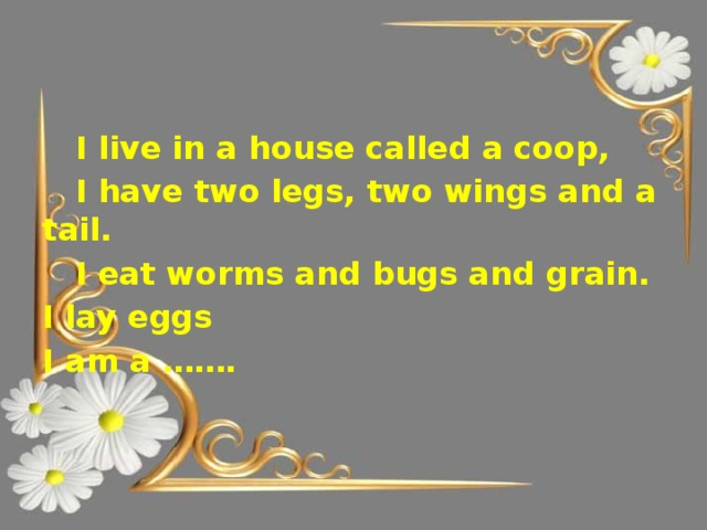 I live in a house called a coop,  I have two legs, two wings and a tail.  I eat worms and bugs and grain. I lay eggs I am a …….