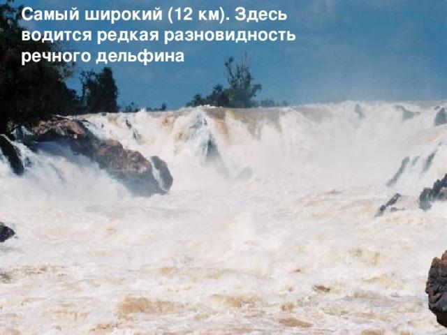 Самый широкий (12 км). Здесь водится редкая разновидность речного дельфина