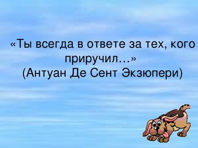 «Ты всегда в ответе за тех, кого приручил…»  (Антуан Де Сент Экзюпери)