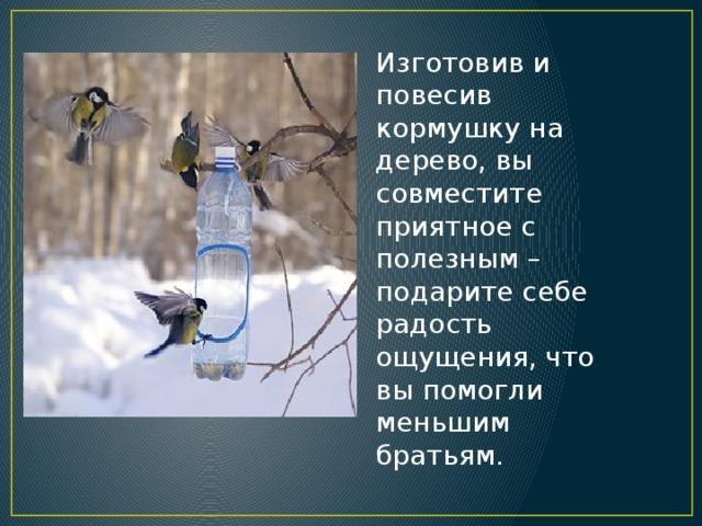 Изготовив и повесив кормушку на дерево, вы совместите приятное с полезным – подарите себе радость ощущения, что вы помогли меньшим братьям.