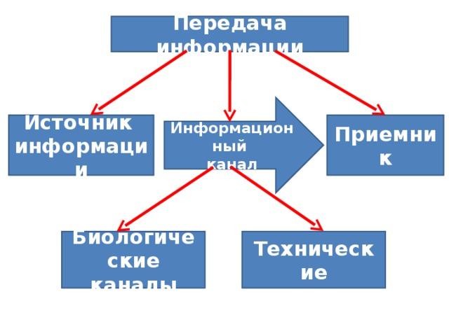 Передача информации Информационный канал Источник информации Приемник Биологические каналы Технические