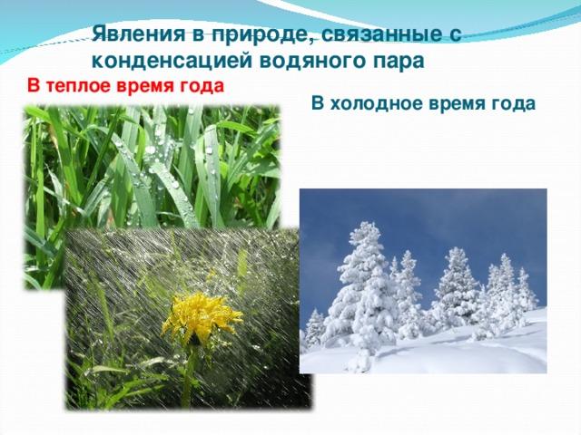 Явления в природе, связанные с конденсацией водяного пара В теплое время года  В холодное время года