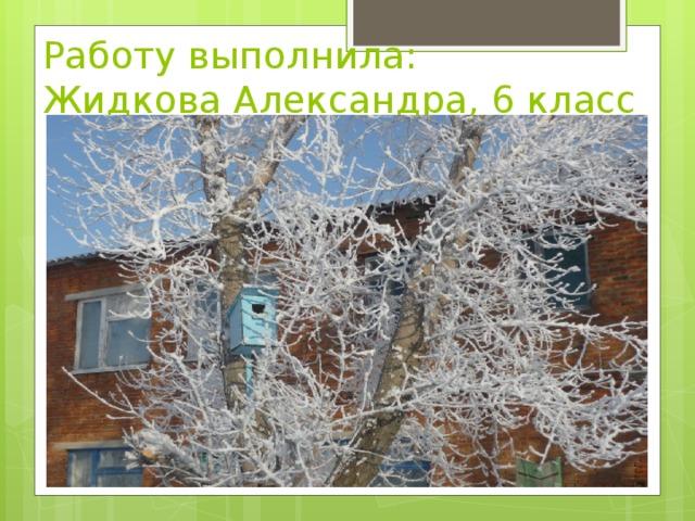 Работу выполнила:  Жидкова Александра, 6 класс