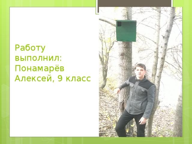 Работу выполнил:  Понамарёв Алексей, 9 класс
