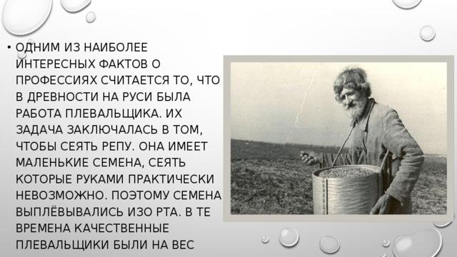 Одним из наиболее интересных фактов о профессиях считается то, что в древности на Руси была работа плевальщика. Их задача заключалась в том, чтобы сеять репу. Она имеет маленькие семена, сеять которые руками практически невозможно. Поэтому семена выплёвывались изо рта. В те времена качественные плевальщики были на вес золота.