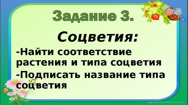 Соцветия: -Найти соответствие растения и типа соцветия -Подписать название типа соцветия