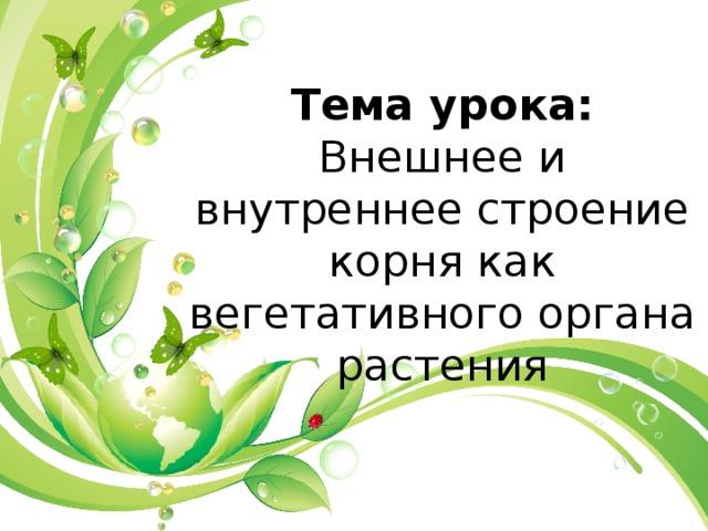 Тема урока: Внешнее и внутреннее строение корня как вегетативного органа растения
