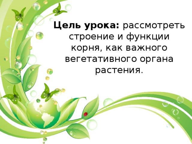 Цель урока: рассмотреть строение и функции корня, как важного вегетативного органа растения.