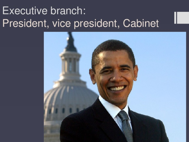 Executive branch:  President, vice president, Cabinet