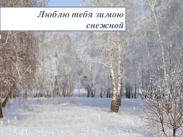 Люблю тебя зимою снежной