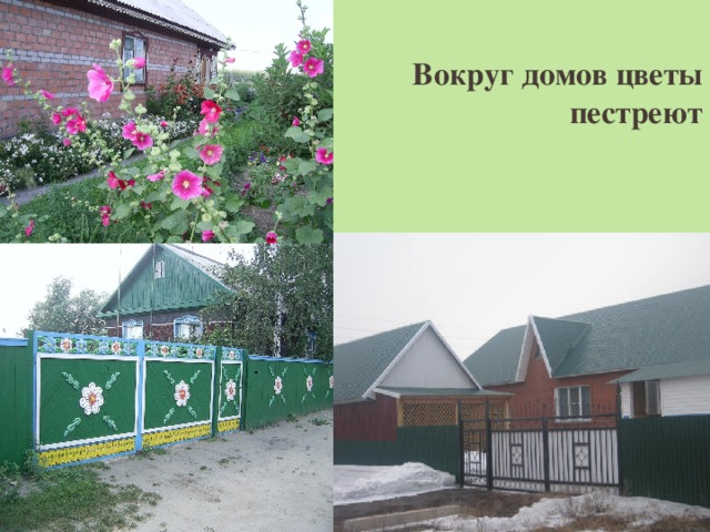 Вокруг домов цветы пестреют