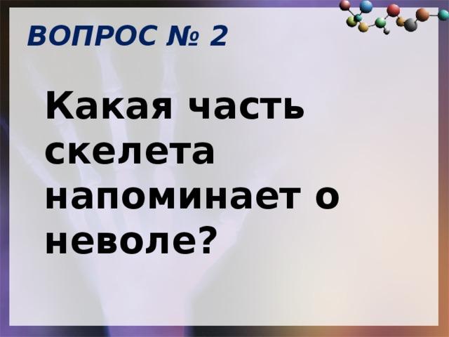 ВОПРОС № 2   Какая часть скелета напоминает о неволе?
