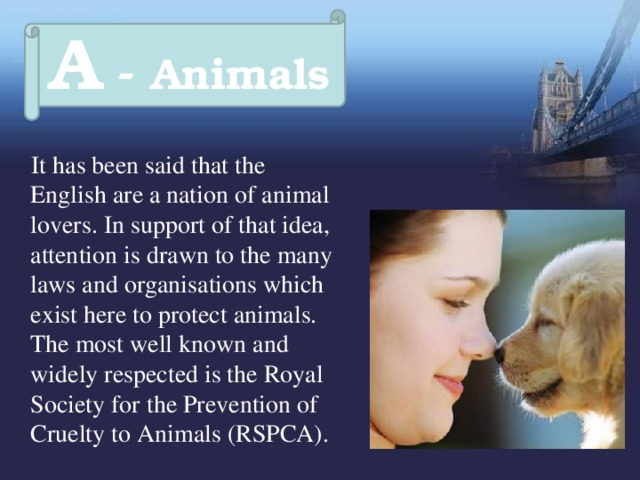 A - Animals  It has been said that the English are a nation of animal lovers. In support of that idea, attention is drawn to the many laws and organisations which exist here to protect animals. The most well known and widely respected is the Royal Society for the Prevention of Cruelty to Animals (RSPCA).