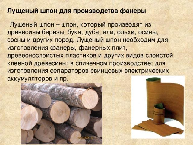Лущеный шпон для производства фанеры   Лущеный шпон – шпон, который производят из древесины березы, бука, дуба, ели, ольхи, осины, сосны и других пород. Лущеный шпон необходим для изготовления фанеры, фанерных плит, древеснослоистых пластиков и других видов слоистой клееной древесины; в спичечном производстве; для изготовления сепараторов свинцовых электрических аккумуляторов и пр.