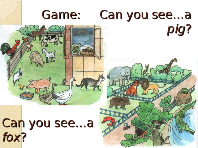 Game: Can you see…a pig ? Can you see…a fox ?