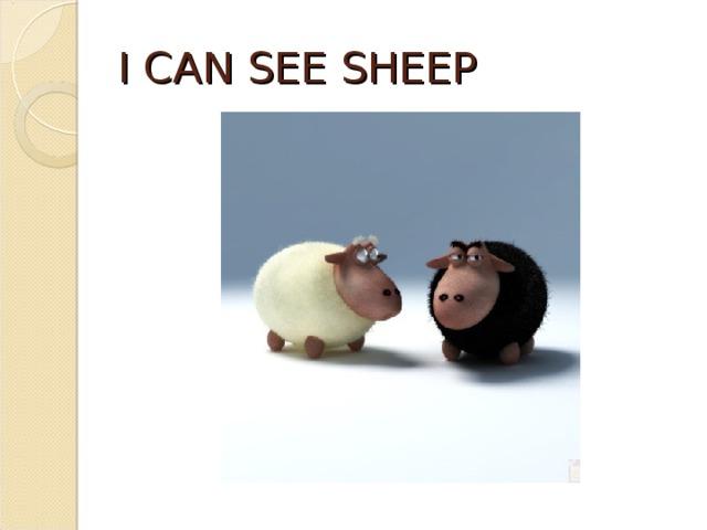 I CAN SEE SHEEP